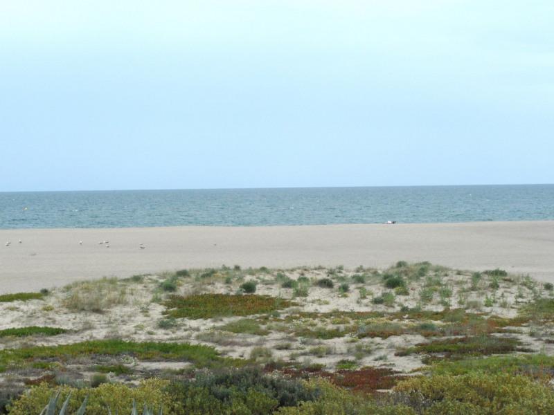 Location vacances appartement Port leucate 797,22€ - Photo 1