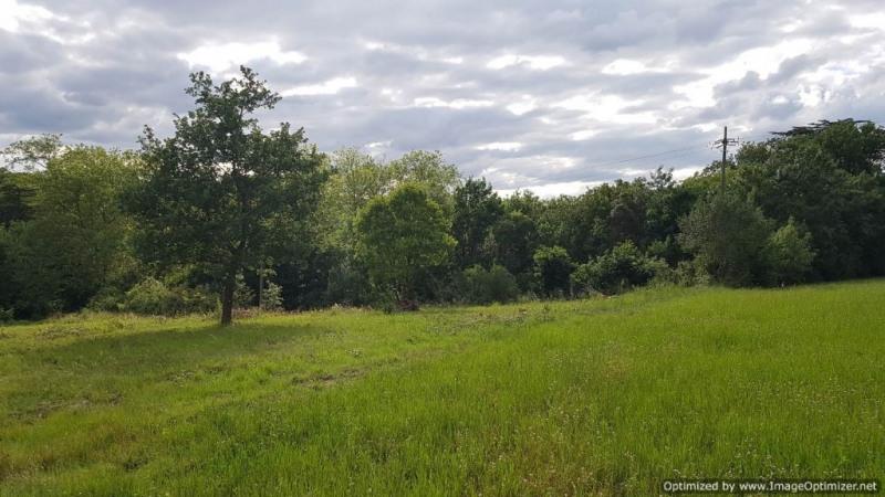 Vente terrain Cenne monesties 38000€ - Photo 2