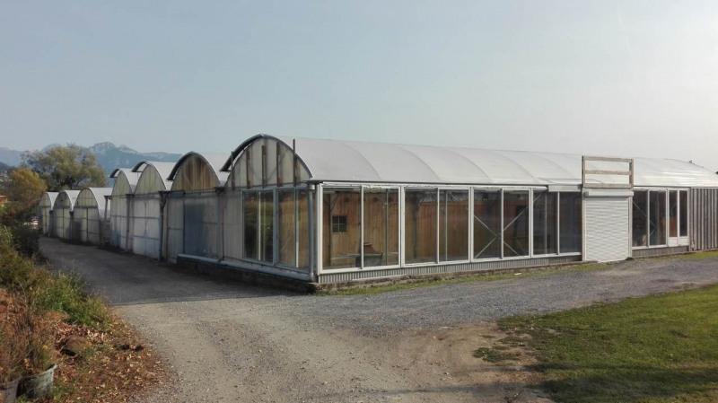Produit d'investissement maison / villa Contamine-sur-arve 498000€ - Photo 7