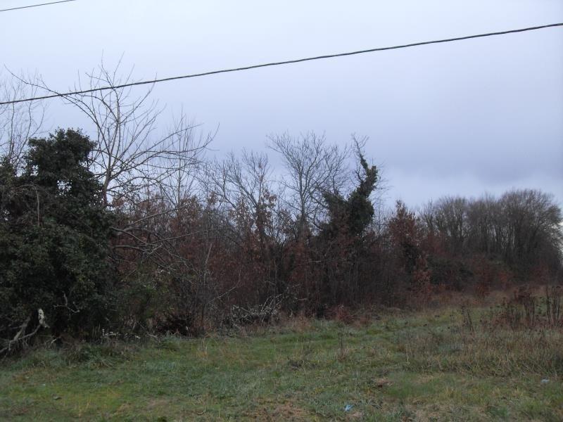Vente terrain St medard de mussidan 33500€ - Photo 3