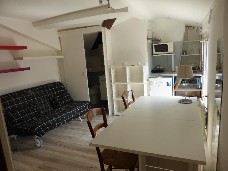Vendita appartamento Toulouse 50000€ - Fotografia 1