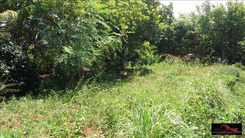 Vente terrain St joseph 430 000€ - Photo 3
