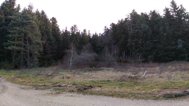 Vente terrain Le chambon sur lignon 29500€ - Photo 2