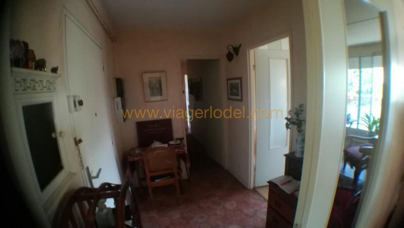 Viager appartement Toulouse 52500€ - Photo 5