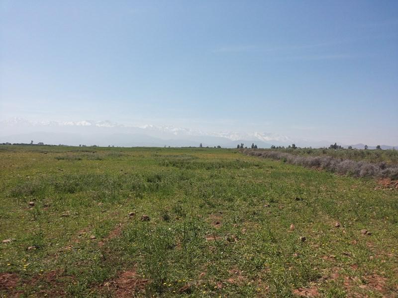 Vente terrain Marrakech 393460€ - Photo 4