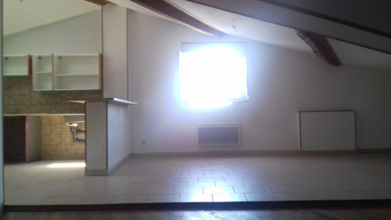 Location appartement Villasavary 500€ CC - Photo 1