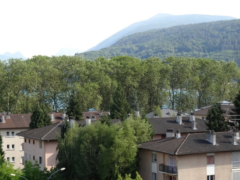 Vente appartement Annecy 238 500€ - Photo 3