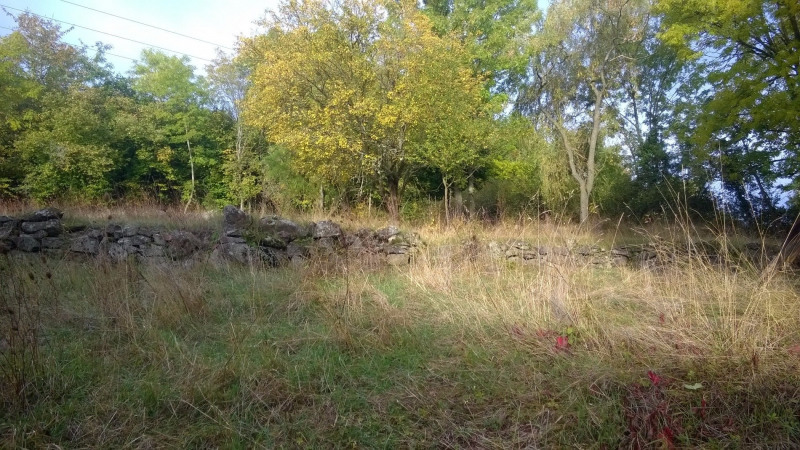 Vente terrain Brives charensac 37 800€ - Photo 10