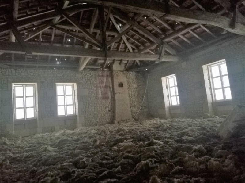 Vente maison / villa Ste colombe 315000€ - Photo 15