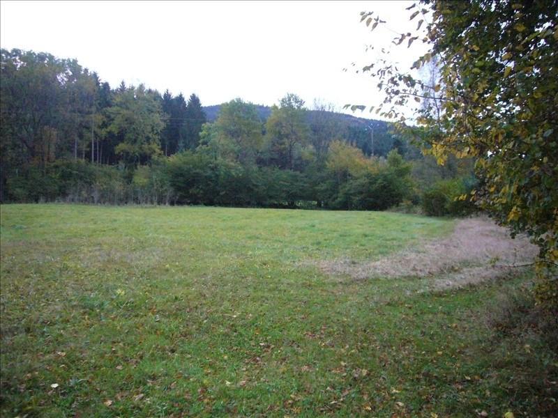 Vente terrain Ban-sur-meurthe-clefcy 38600€ - Photo 4