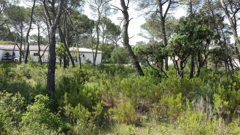 Vente terrain Le cannet des maures 145000€ - Photo 4