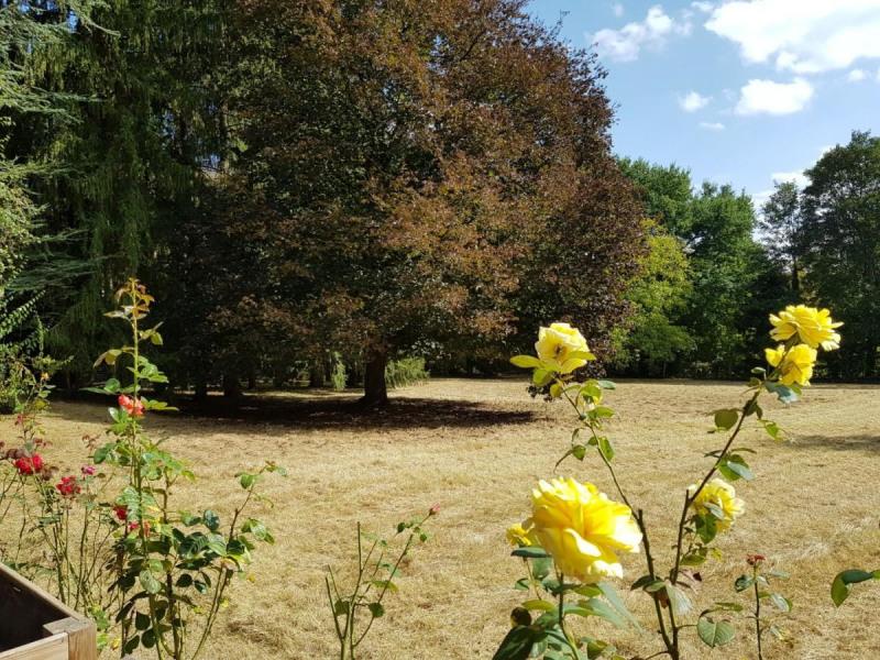 Sale house / villa Montigny-sur-loing 441000€ - Picture 4