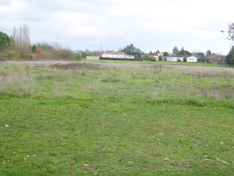 Vente terrain Montauban 250000€ - Photo 3