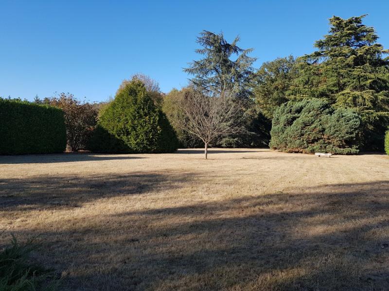Sale house / villa Montigny sur loing 545000€ - Picture 5