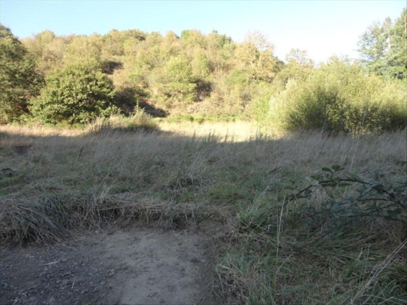 Vente terrain Manglieu 29000€ - Photo 1