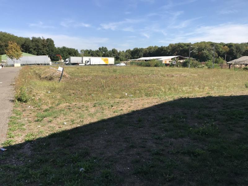 Venta  terreno Bennwihr 316000€ - Fotografía 3