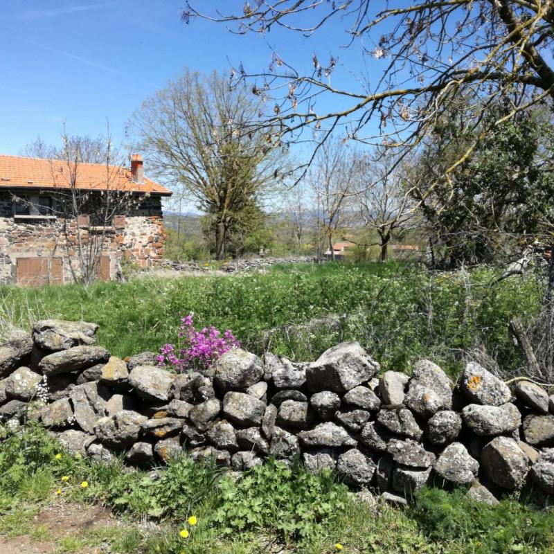 Vente maison / villa St martin de fugeres 65200€ - Photo 13