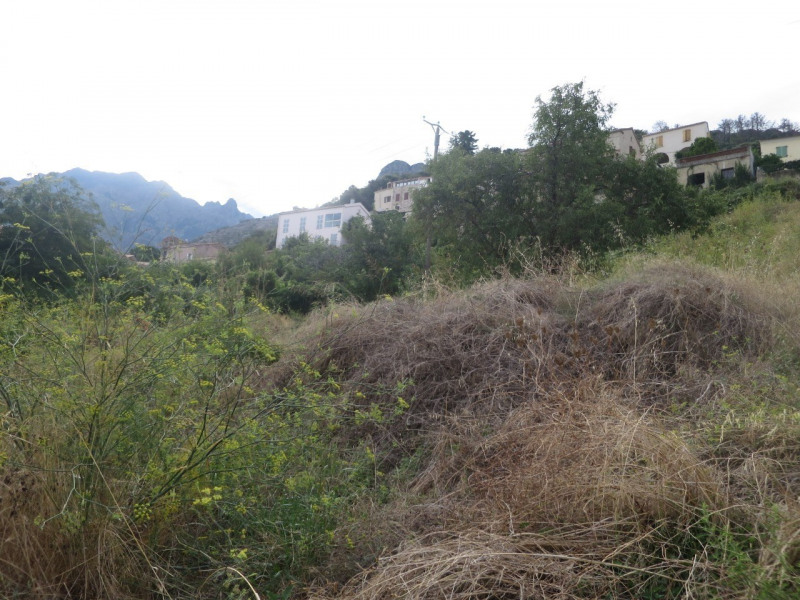 Vente terrain Calenzana 100 000€ - Photo 6