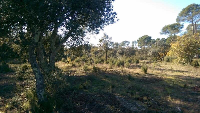 Vente terrain Le cannet des maures 127000€ - Photo 1