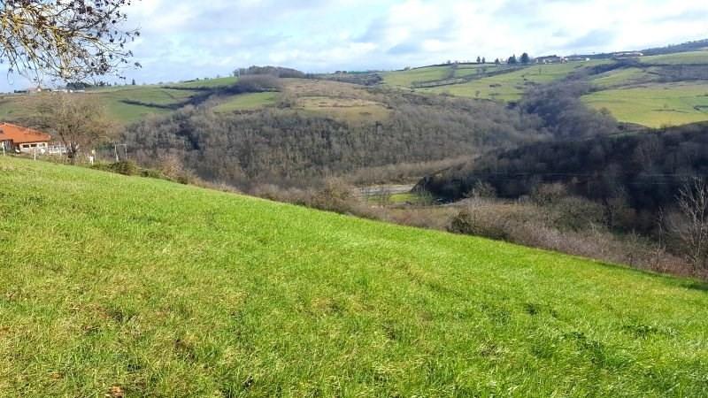 Vente terrain Roanne 33000€ - Photo 1