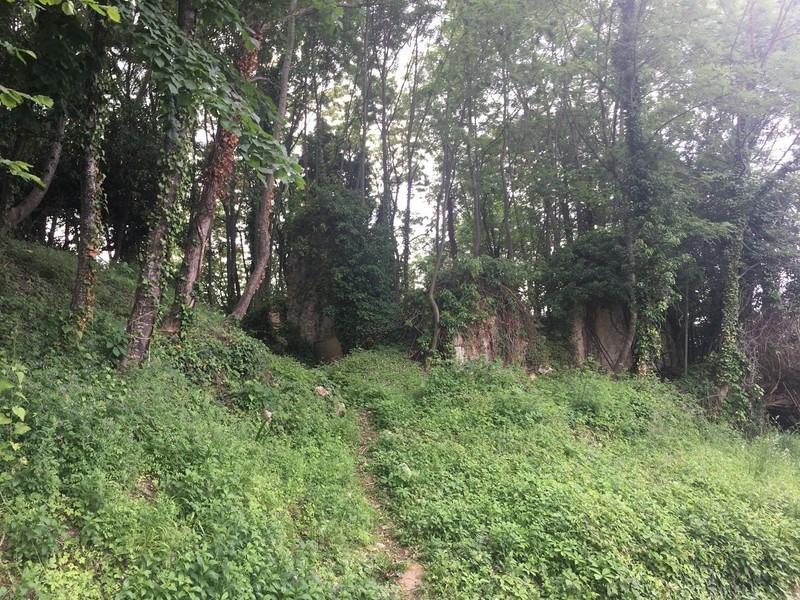 Vente terrain La baume-d'hostun 75000€ - Photo 8