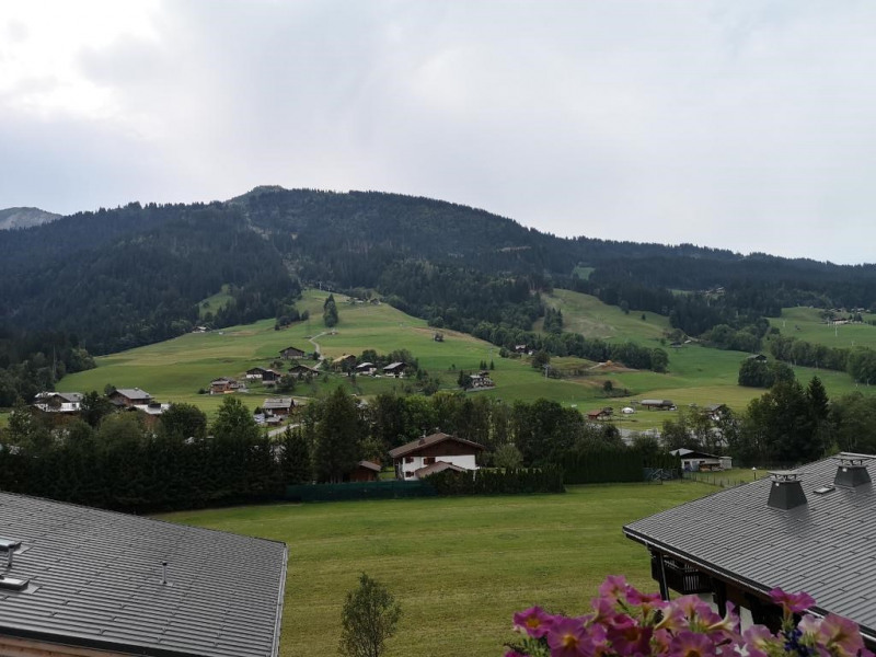 Vente appartement Praz sur arly 116 600€ - Photo 6