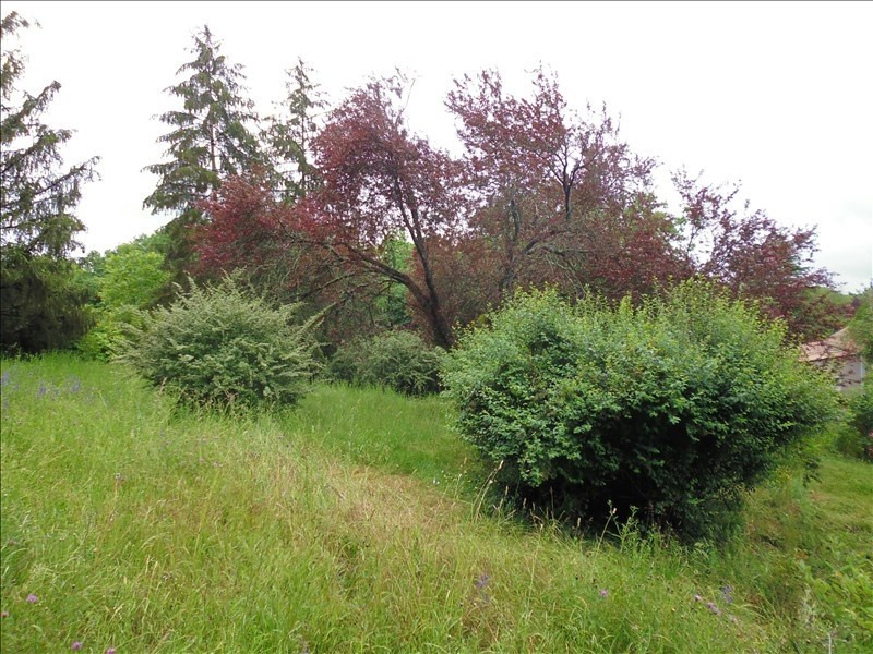 Vente terrain Aslonnes 41 000€ - Photo 3