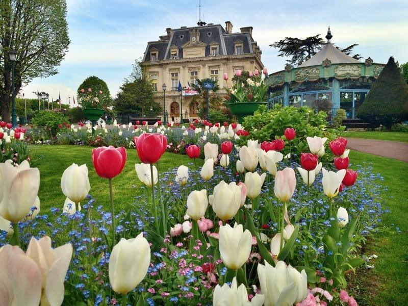 Vente de prestige maison / villa Nogent-sur-marne 869000€ - Photo 1