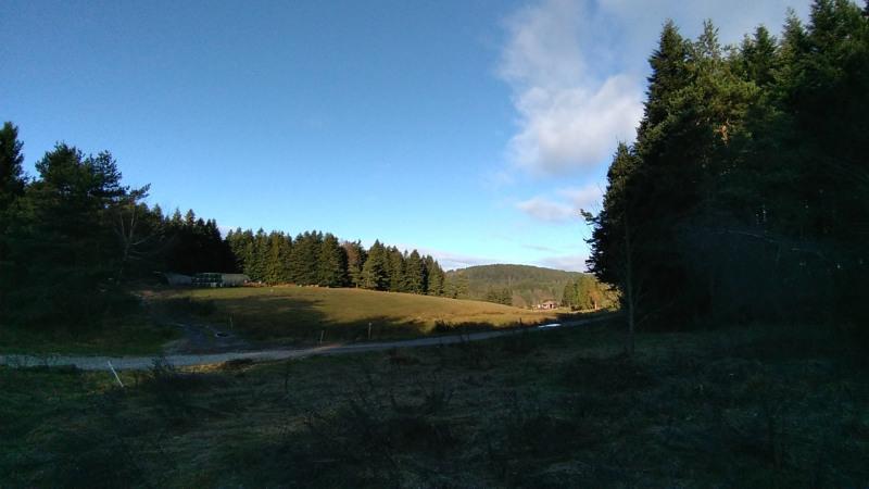 Vente terrain Le chambon sur lignon 29500€ - Photo 5