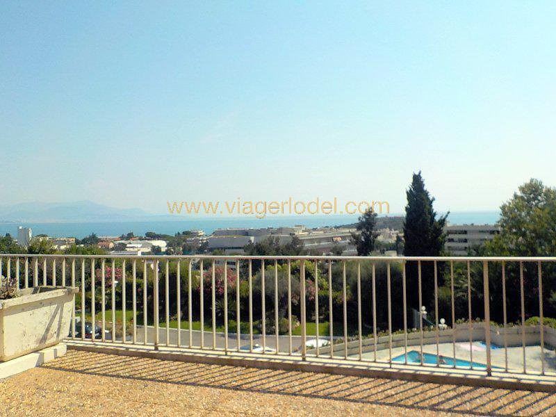 Viager appartement Antibes 95 000€ - Photo 9