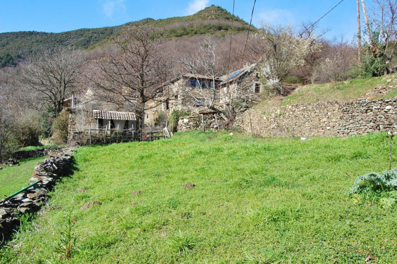 Vente maison / villa Joyeuse 350000€ - Photo 2