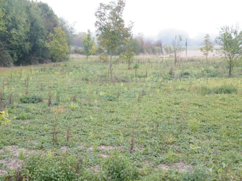 Vente terrain Montoire sur le loir 17000€ - Photo 1
