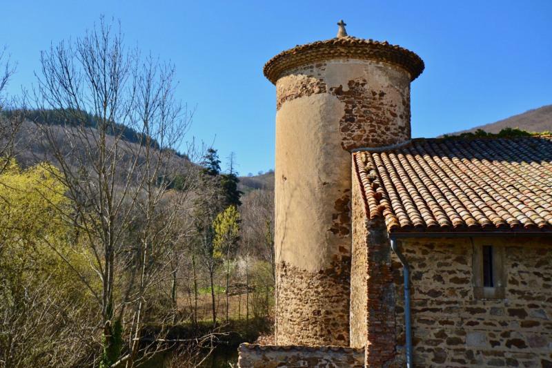 Vente de prestige château Condrieu 960000€ - Photo 5