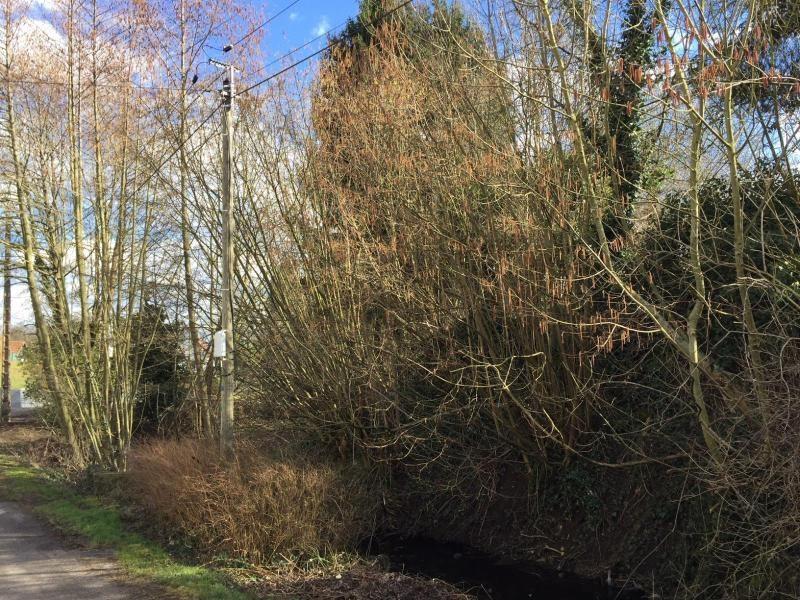 Verkauf grundstück Drachenbronn birlenbach 50400€ - Fotografie 1