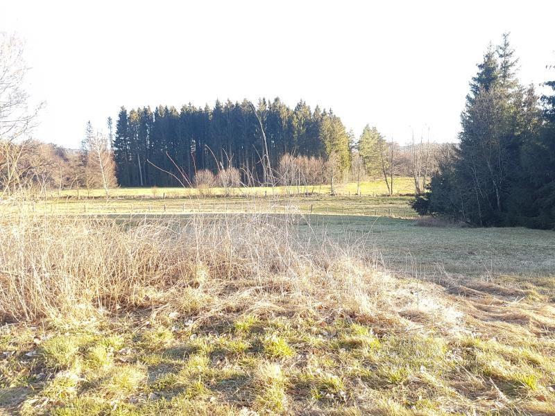 Vente terrain La houssiere 16600€ - Photo 3