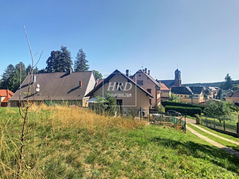 Venta  casa Wangenbourg 388500€ - Fotografía 5