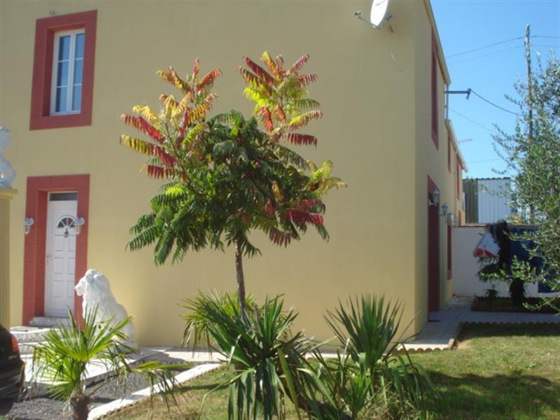 Vente maison / villa Tonnay-charente 263750€ - Photo 10