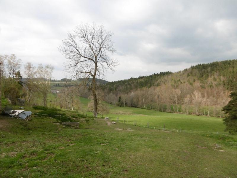 Sale house / villa Yssingeaux 234000€ - Picture 3