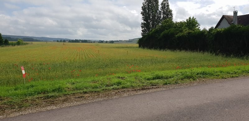 Vente terrain Evry 55 000€ - Photo 4