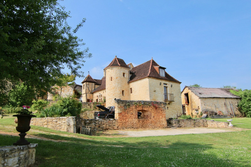 Sale house / villa Salignac-eyvignes 490000€ - Picture 1