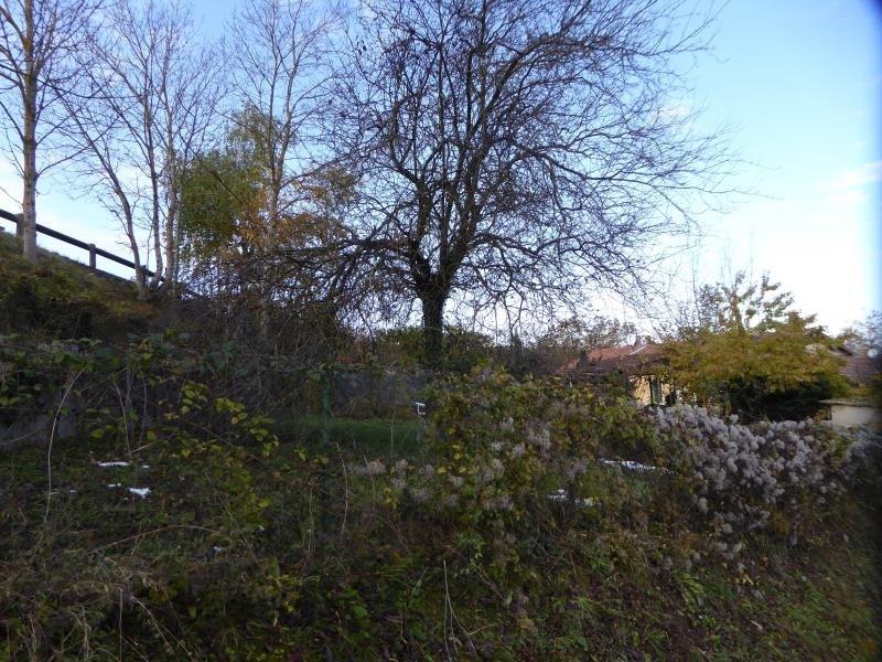 Vente terrain Diemoz 125000€ - Photo 5