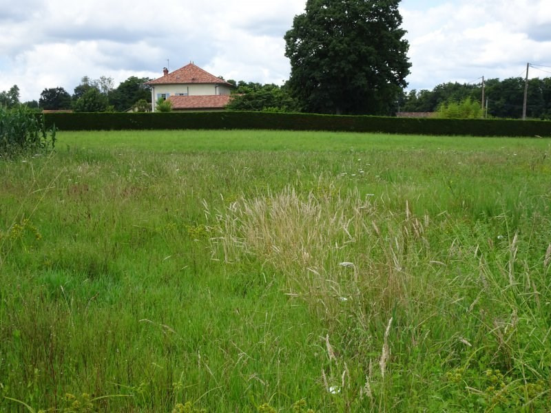 Vente maison / villa St jean de marsacq 262695€ - Photo 9