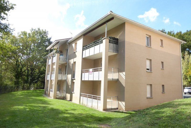 Vente appartement Terrasson lavilledieu 50 000€ - Photo 1