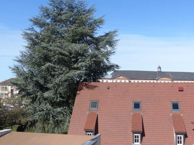 Vente appartement Haguenau 333000€ - Photo 2