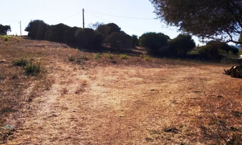 Sale site Serra-di-ferro 290 000€ - Picture 5