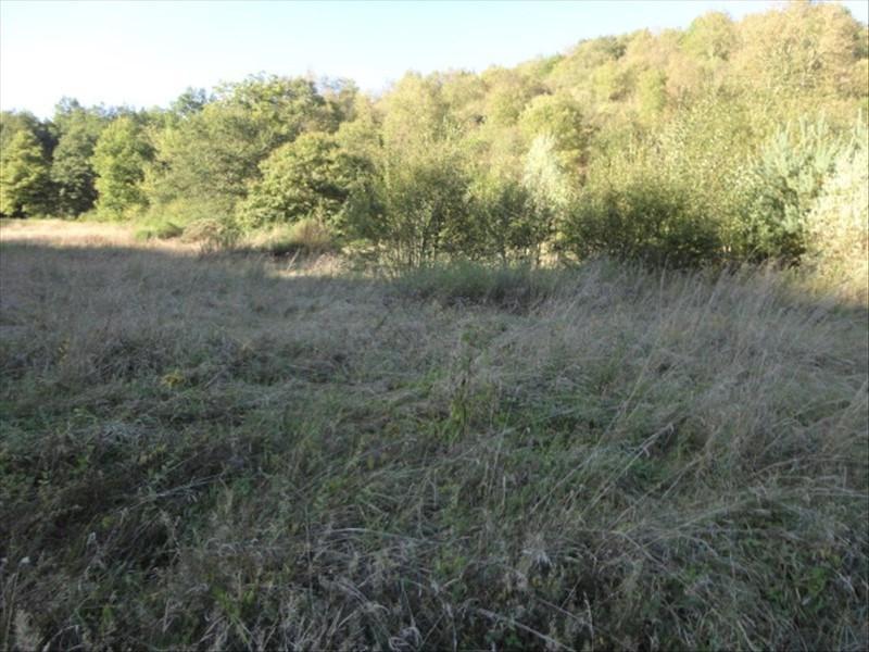 Vente terrain Manglieu 29000€ - Photo 2