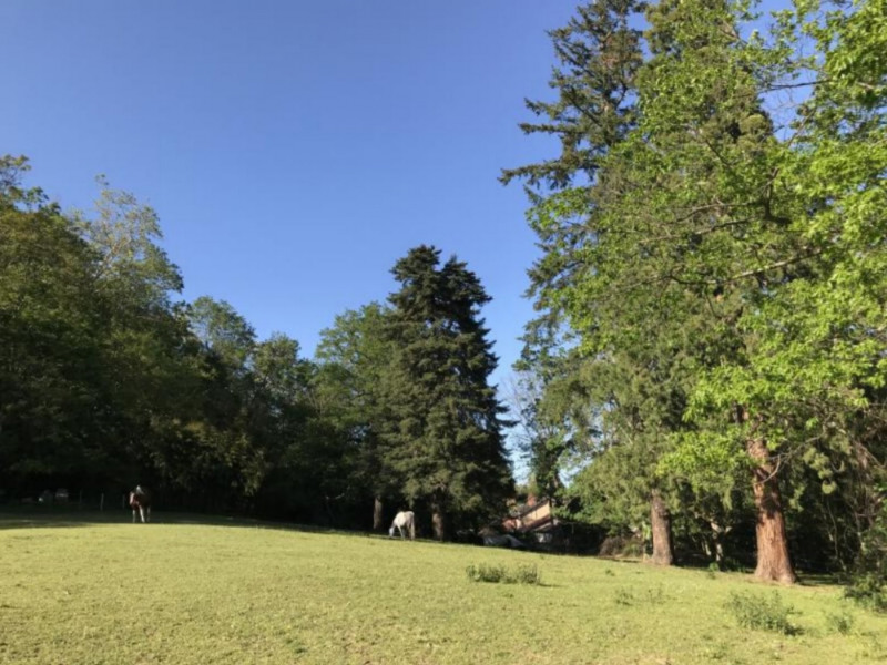 Vente de prestige château Villefranche sur saone 1750000€ - Photo 3