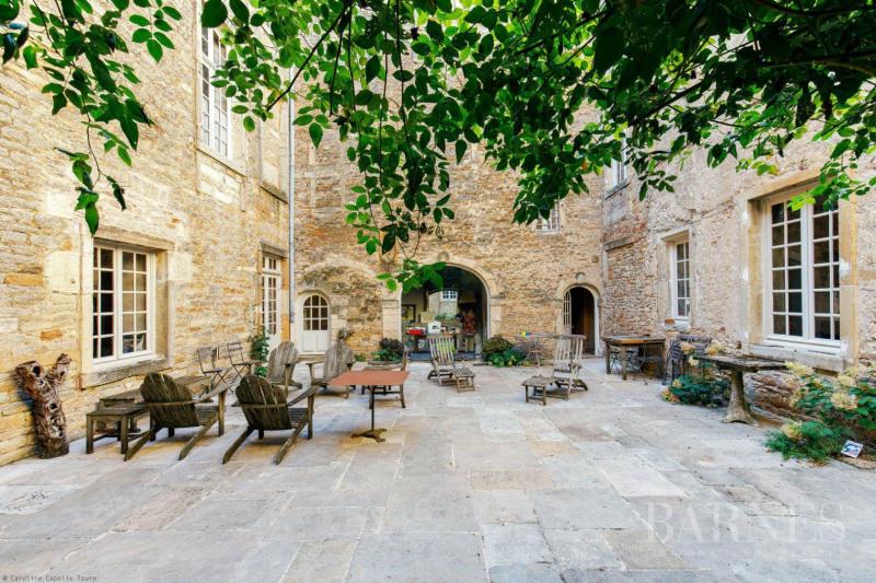 Vente de prestige château Mâcon 1770000€ - Photo 10