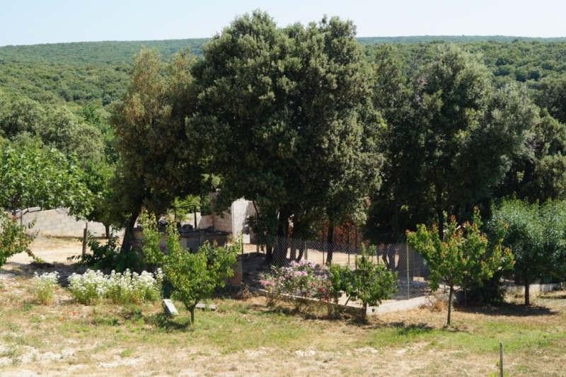 Immobile residenziali di prestigio casa Barjac 625400€ - Fotografia 10