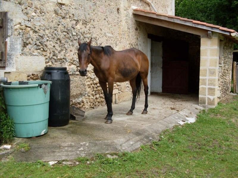 Sale house / villa Perigueux 352000€ - Picture 9